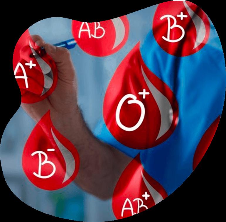 Kan Grubuna Göre Beslenme Danışmanlığı